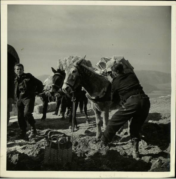 [Campagne d'Italie] IV Army 1944-1945  07ca44e3f2b099cc_landing