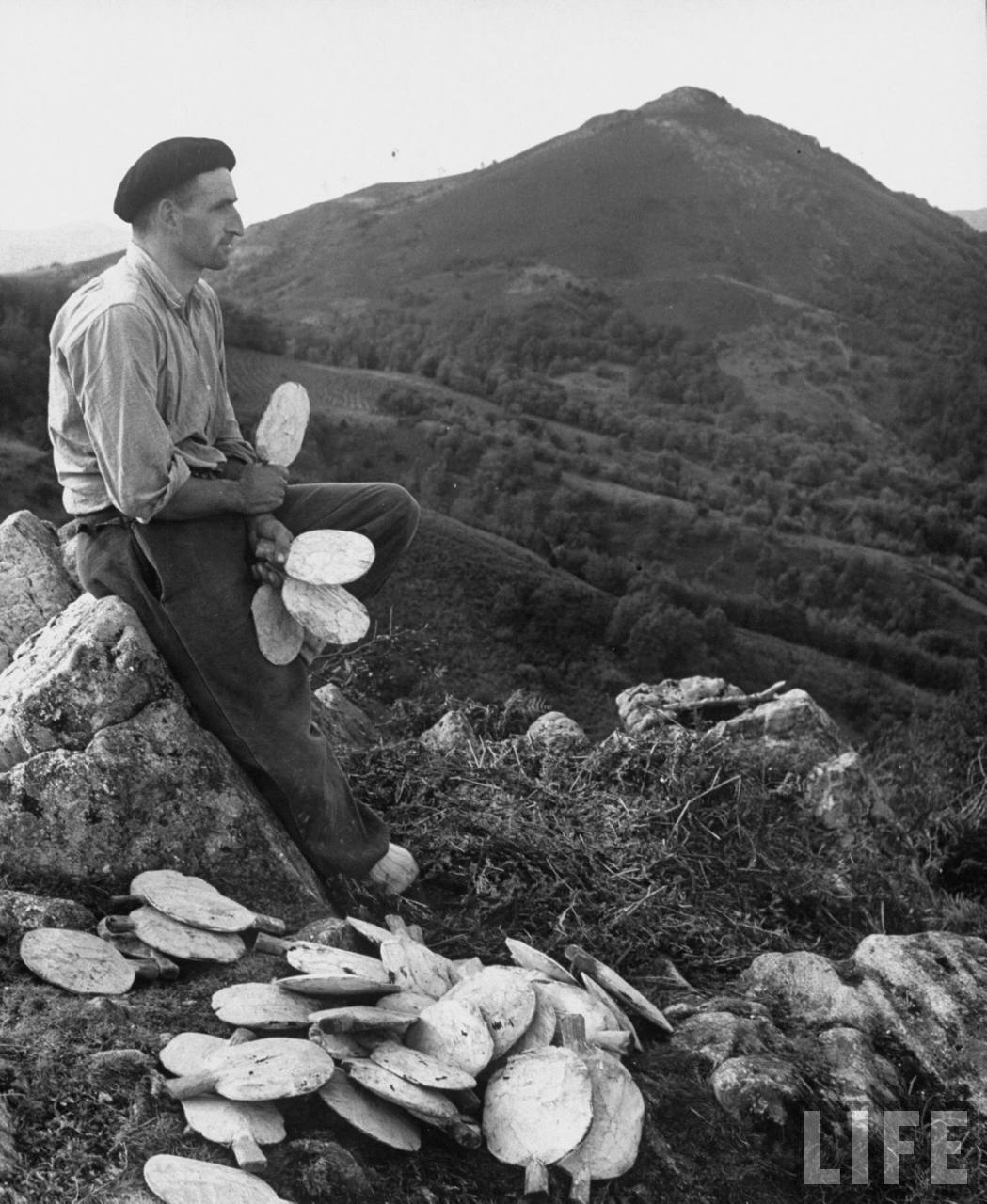 A man sitting in the hilly meadows holding palittes.