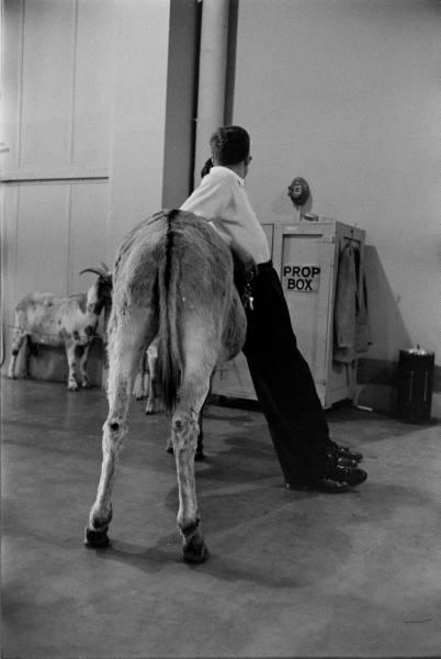 © Time Inc., by Ralph Crane, circa 1950s