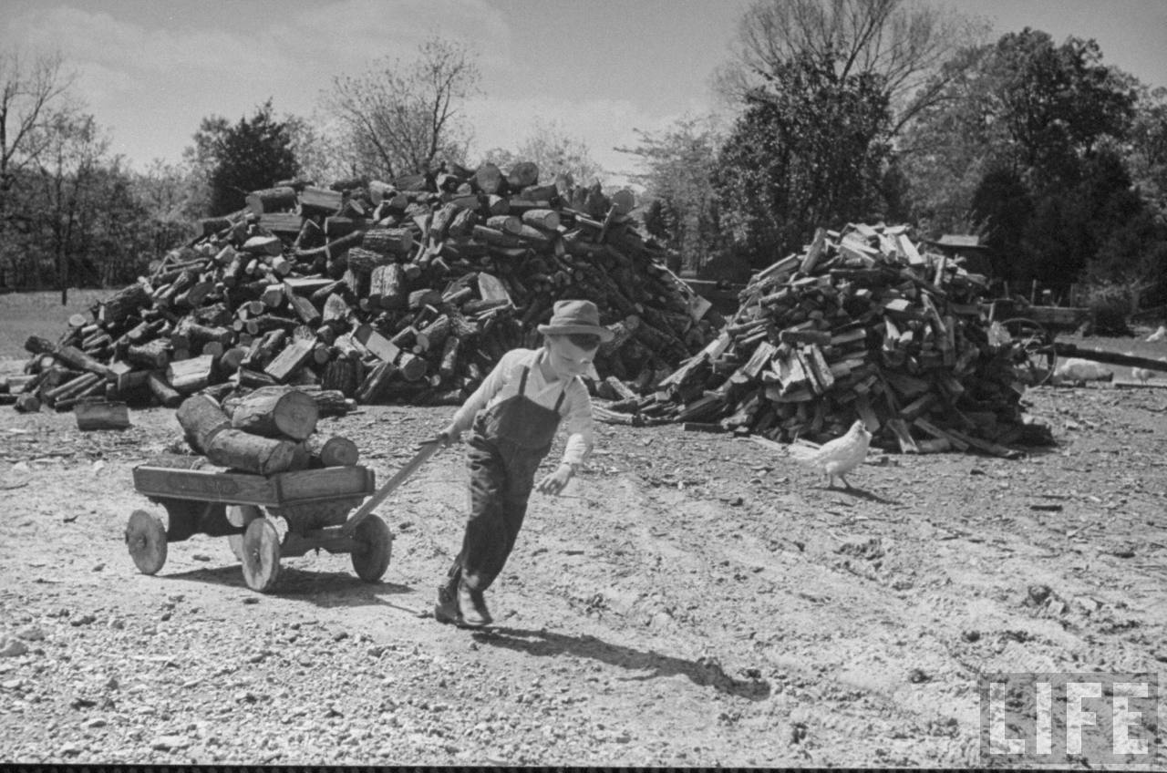 Boy hauling in days supply of wood.