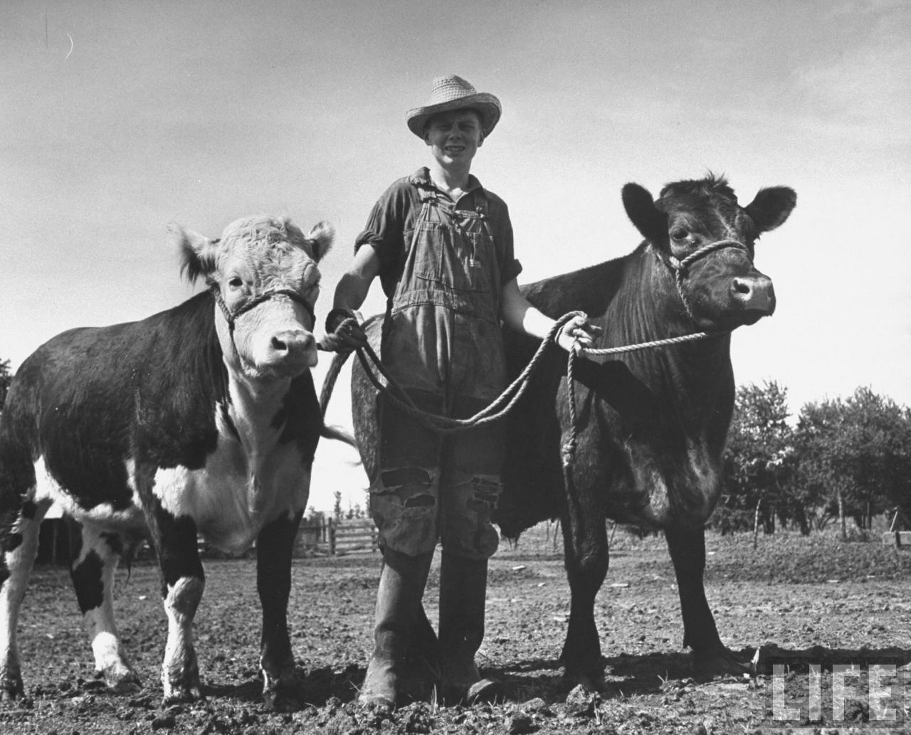 Old Photos: One Day In Life Of Kansas Farm Boy