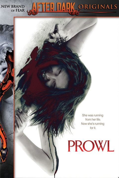 Prowl affiche