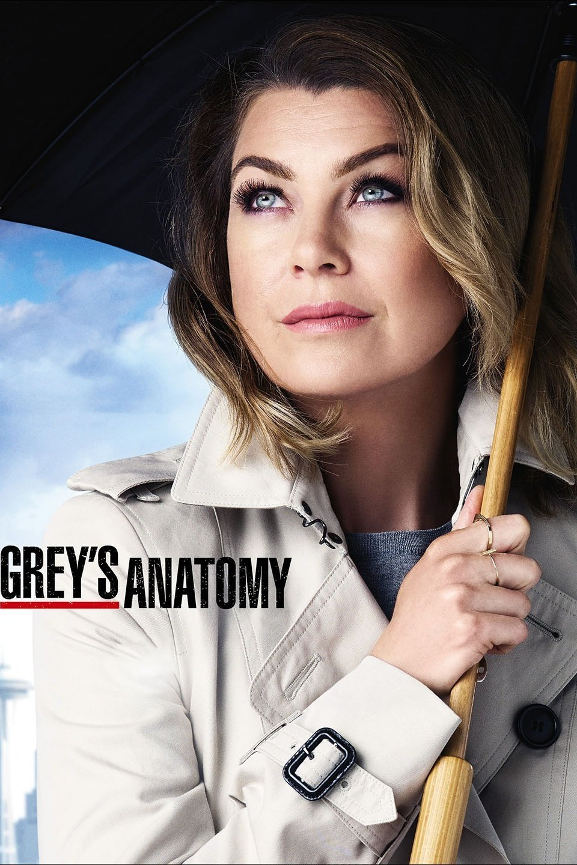 Greys anatomy s12e22 HDTV x264 230MB