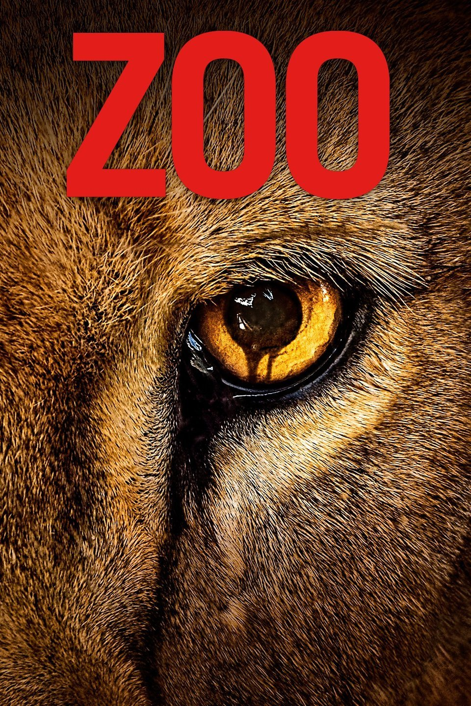 Zoo Season 3 Episode 1 Download HDTV 480p & 720p