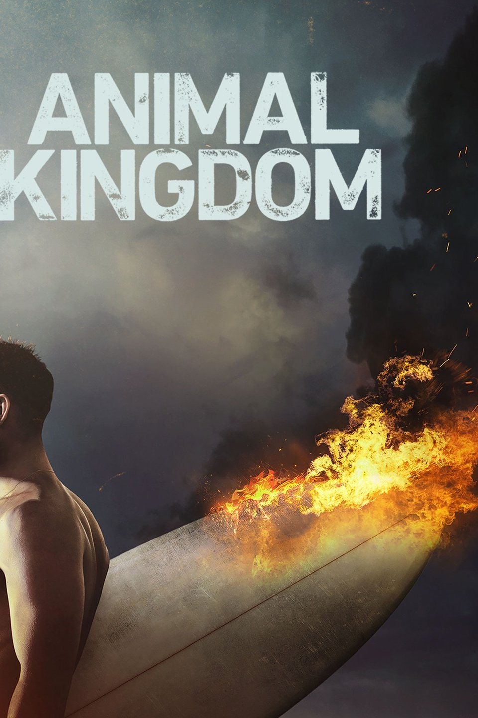 Animal Kingdom Season 2 Episode 2 Download HDTV 480p & 720p