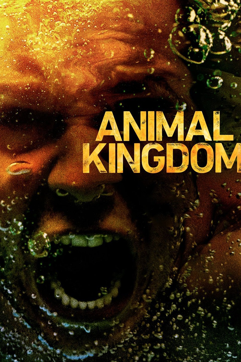 سریال Animal Kingdom