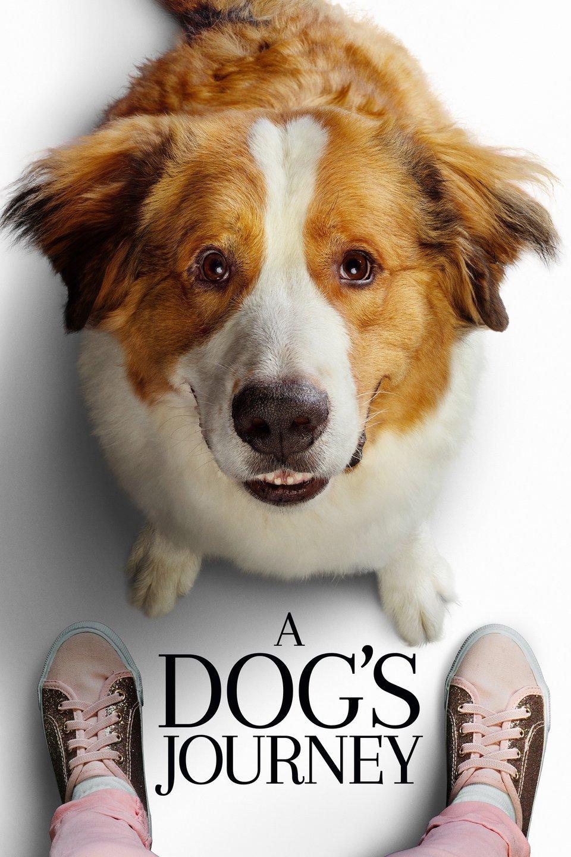 Image result for a dog's journey trailer