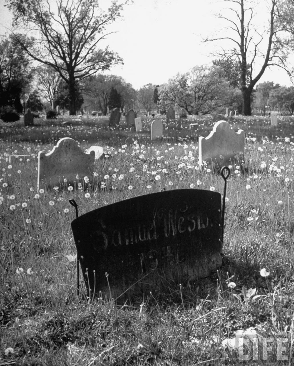 Grave of blacksmith Samuel Weston who died in1846 is marked by iron ox-cart tail resting on two plowshares from his shop (from photo essay re Harry Truman's Missouri).