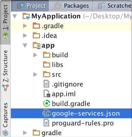 The google-services.json file in the app directory