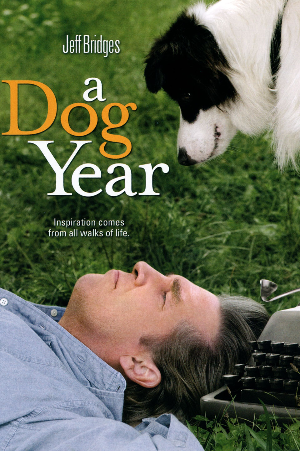 Image result for A Dog Year