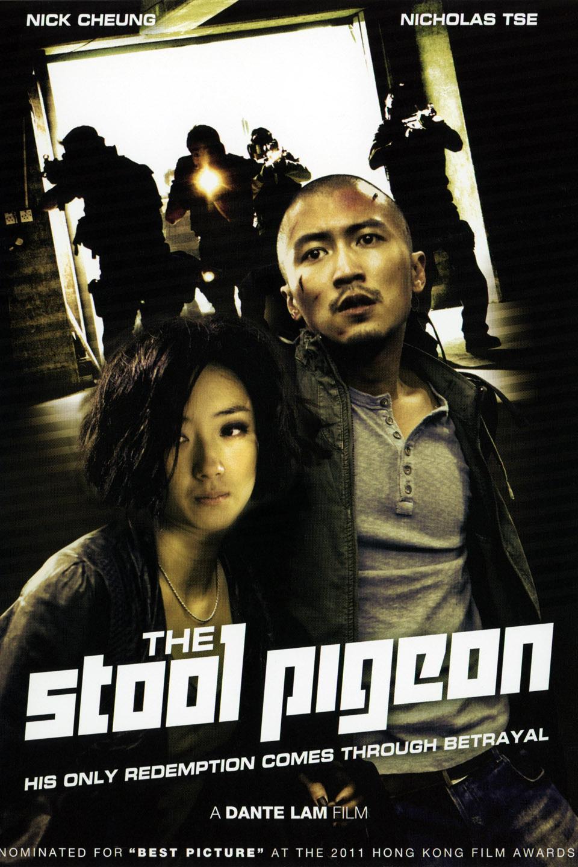 The Stool Pigeon-Sin yan