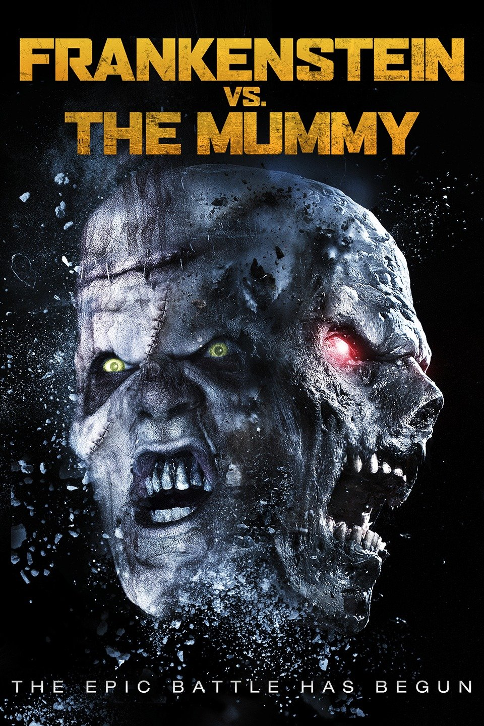 Frankenstein vs. The Mummy-Frankenstein vs. The Mummy