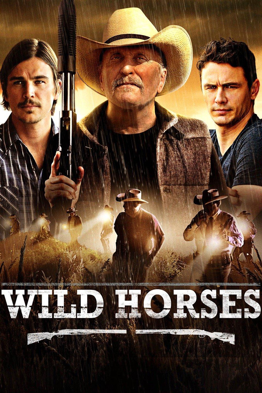 Wild Horses-Wild Horses