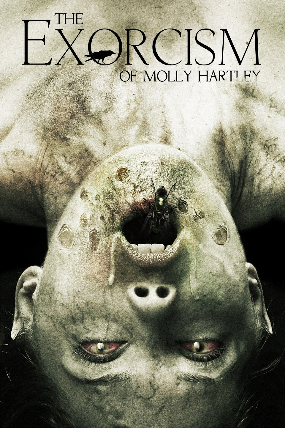 The Exorcism of Molly Hartley-The Exorcism of Molly Hartley