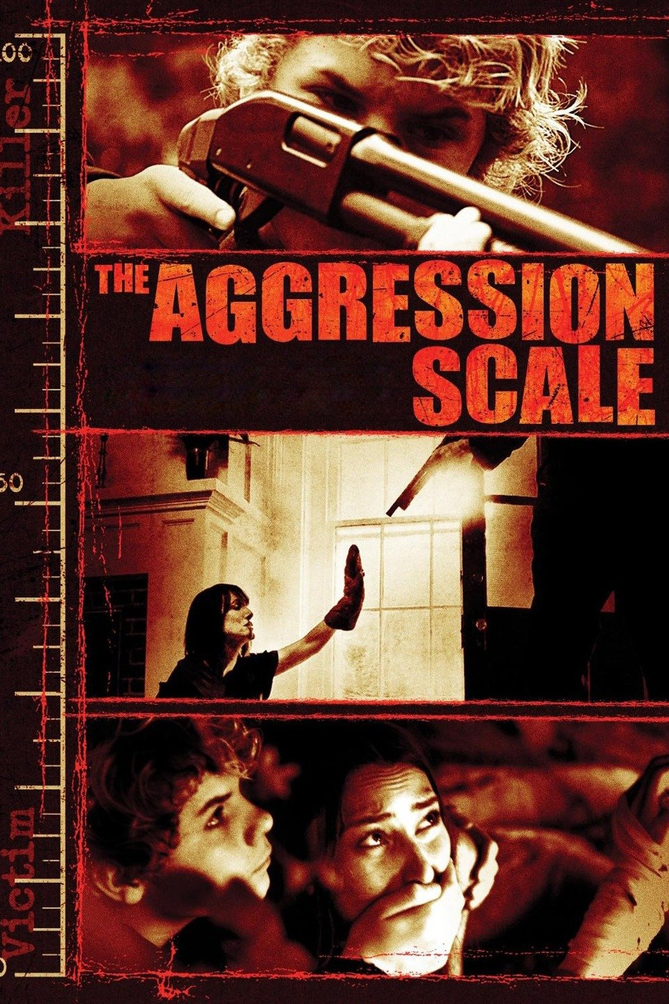 The Aggression Scale-The Aggression Scale