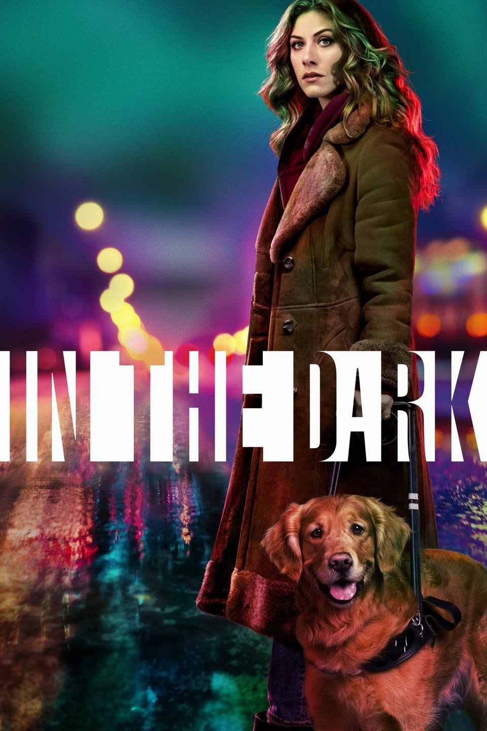 Image result for in the dark show
