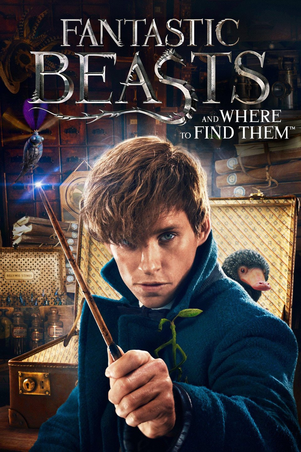 film Fantastic Beasts and Where to Find Them (2017)