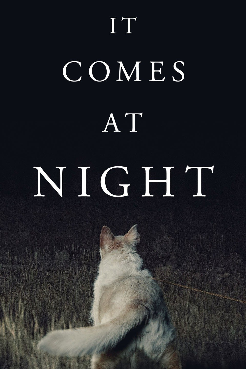 Image result for it comes at night